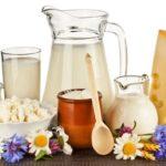 Молочные продукты: роль в питании